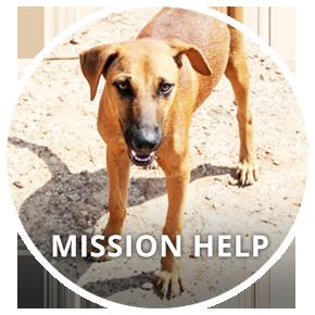 Button_MissionHELP