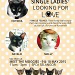 6May2015_SingleLadies