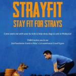 8Apr2015_Strayfit
