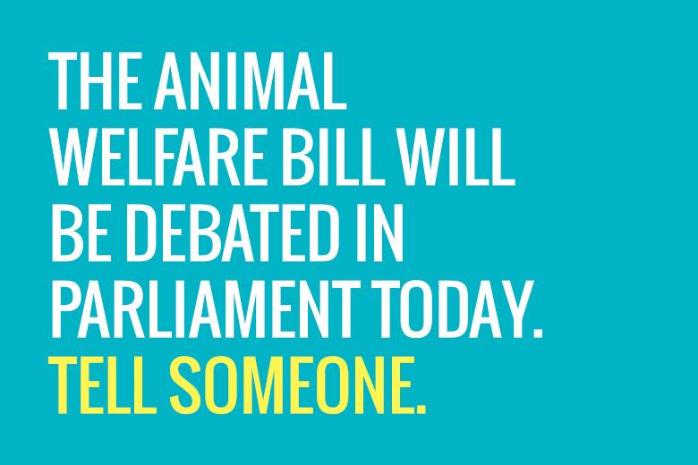 16June2015_AnimalWelfareBill
