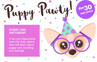 NEW: Puppy Pawty!