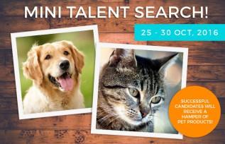 Is Your Pet The Next Big Superstar?