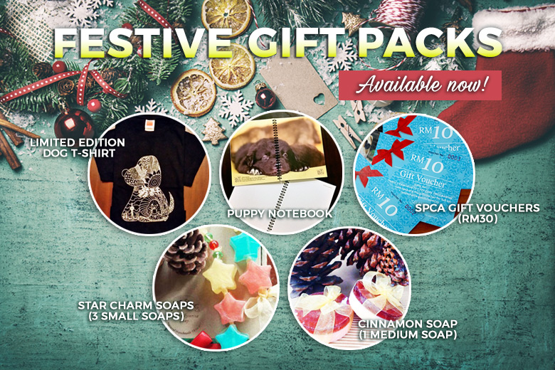 festivegiftpacks_news