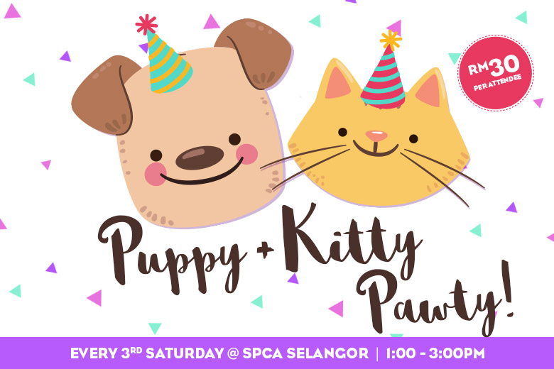 PuppyKittyPawty_News