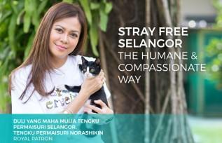 Stray Free Selangor: Launching This Week!