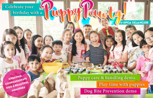 Celebrate your birthday with a Puppy Pawty @ SPCA Selangor!