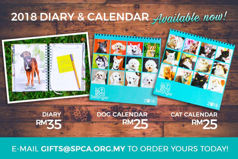 CalendarDiary_News