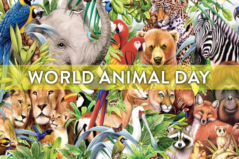 9 Ways To Celebrate World Animal Day!