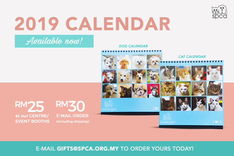 Calendars Available Now!