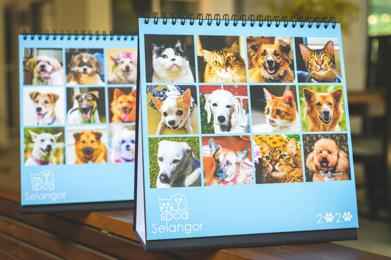 2020 Calendar out now!