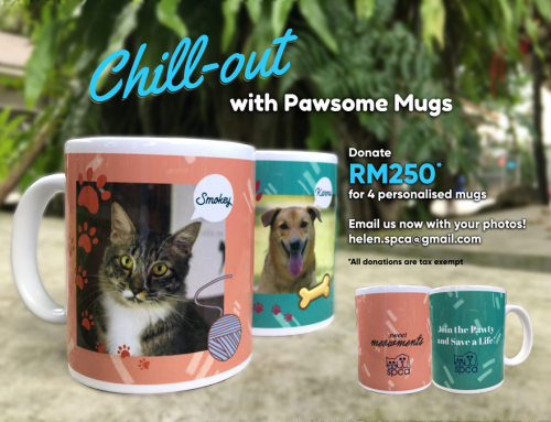 Chill-out with Pawsome Mugs!